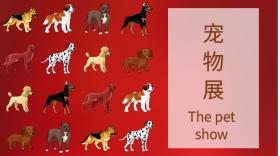宠物展公众号封面