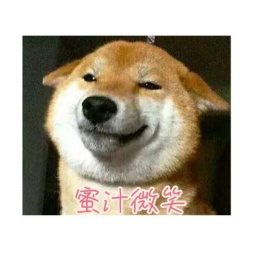 狗子v表情眯眼温和可爱表情包表情大全qq的可爱图片