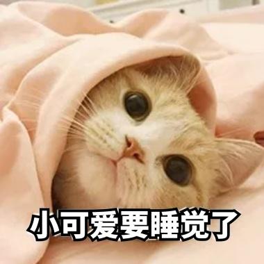 退下朕要休息了表情打哈欠睡觉搞笑表情38车评猫咪包号图片