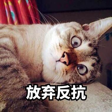 放弃v表情的表情mbi动态包表情图片