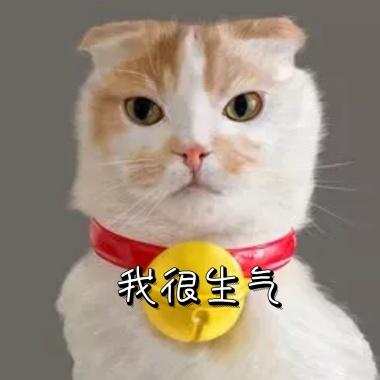 七夕情人节可爱兔子表情生气发火竟然不接我电早晚v兔子表情图片图片