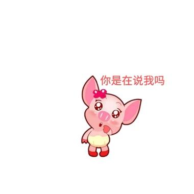 表情豆芽号公众宣传推广封面包动画100种图片