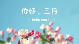 你好三月鲜花唯美公众号封面