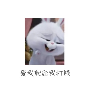 女孩日常图片之哈哈哈哈表情害羞表情包兔子回复图片