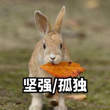 粉嫩坚强小兔子垃圾要可爱表情表情包v兔子