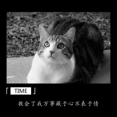时间猫情感摄影风公众号正方形配图模版