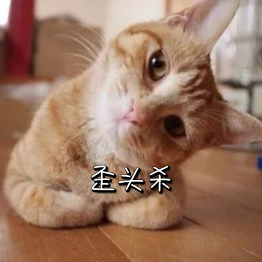 Q版可爱表情歪头小卡通表情小熊猫打招呼无语图片包大全动物