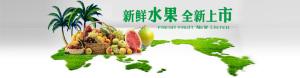 水果素材图片背景banner