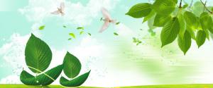 绿色清新环保背景