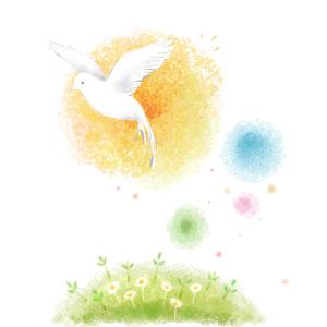 白鸽花草淡彩