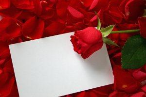 浪漫玫瑰白纸背景