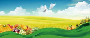 绿色美食海报背景素材