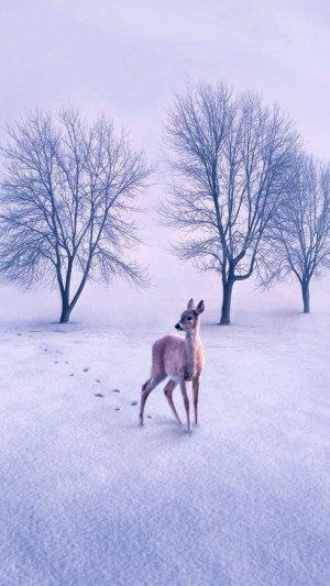 留下脚印的鹿H5素材