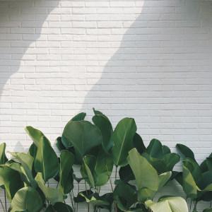 白砖墙主图背景素材