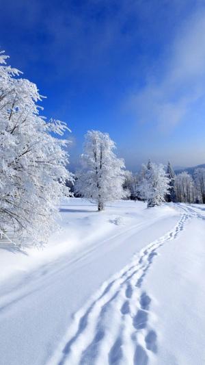 蓝色天空雪景H5背景