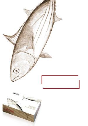 日式简约金枪鱼海产品超市促销包装海报