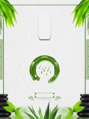 24节气雨水传统节气海报模板