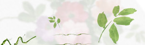 小清新绿色素材背景海报