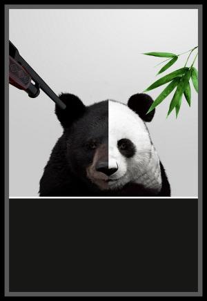 熊猫国宝生态环境动物保护国家保护动物