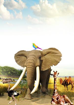 动物剪影保护野生动物公益海报背景素材