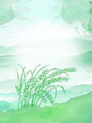 绿色矢量水彩二十四节气小满背景素材