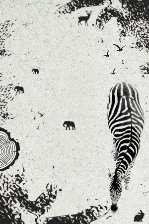 保护动物海报背景