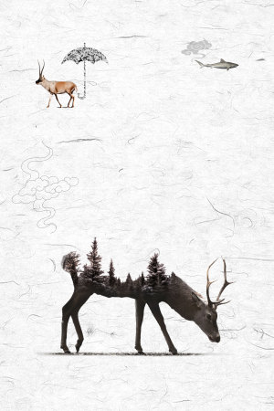 保护动物保护环境海报背景素材