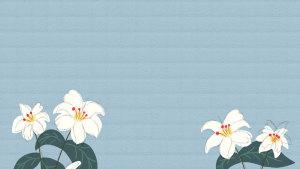 手绘百合花朵蓝色底纹背景