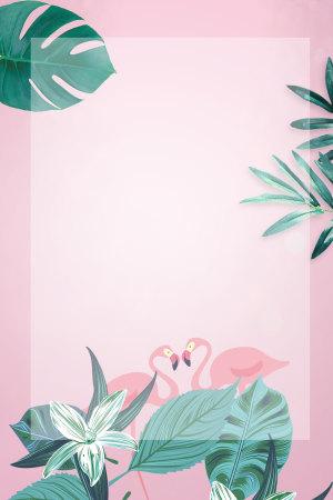 芭蕉叶火烈鸟粉色广告背景