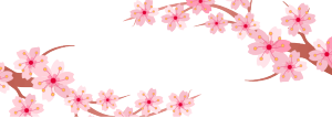 粉色樱花banner矢量素材