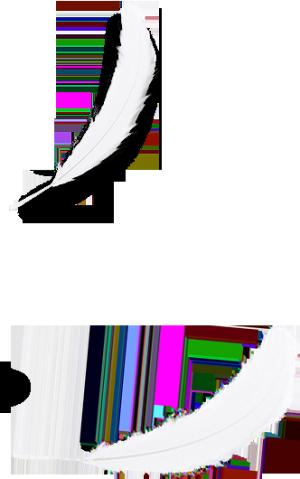 白色羽毛图案