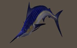 海洋图片3d卡通鱼