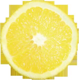 3D图片3d水果素描 橙子