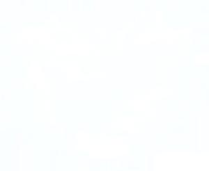 七夕情人节白色爱心