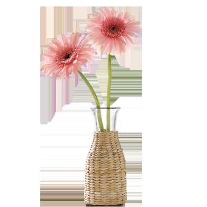 花瓶 拍照摆件