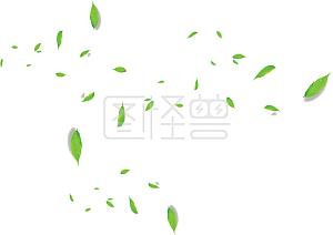 淘宝树叶漂浮素材