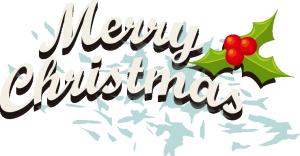 手绘白色圣诞字母果实