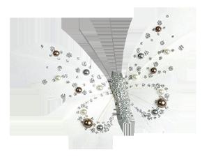 带珍珠的白蝴蝶