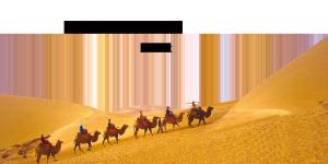 沙漠骆驼banner素材