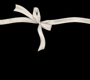 白色蝴蝶结丝带