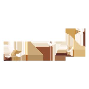 白鹤齐飞图