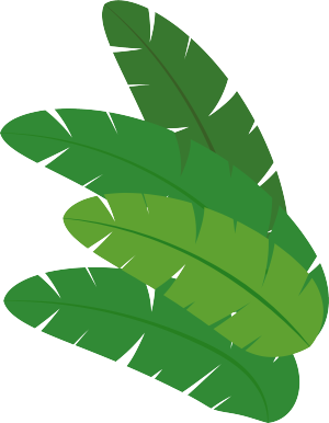 绿色芭蕉叶矢量图
