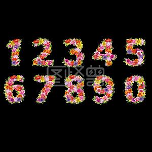 花朵阿拉伯数字