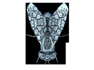 精美金属光泽苍蝇摆件