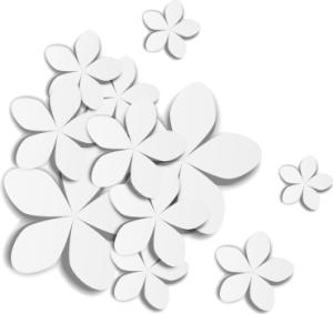 3D立体白花