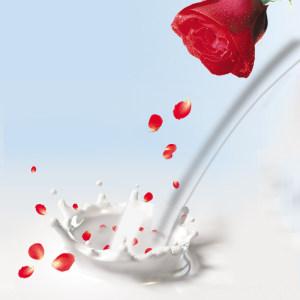 化妆品美白牛奶草本乳液主图