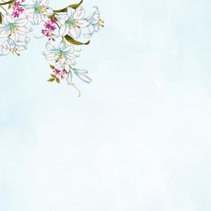 手绘百合花背景