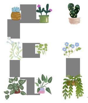 小清新版本的绿色植物装饰画