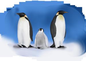 世界海洋日可爱的企鹅