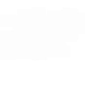 白色半透明网状物蜘蛛网